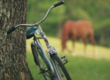 Travel Estonia by Bicycle