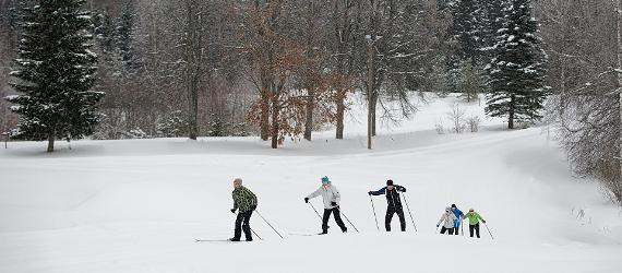 Northern pastime - cross country skiing